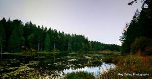 Hemer Provincial Park
