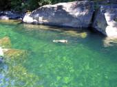 nanaimo_river